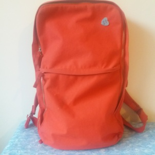 Ikea Förenkla Red Back Pack || Tuesday Reviews Day 29-11-2016 || raeritchie.com